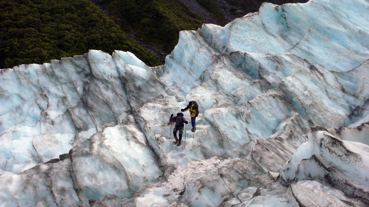 221 Fox Glacier
