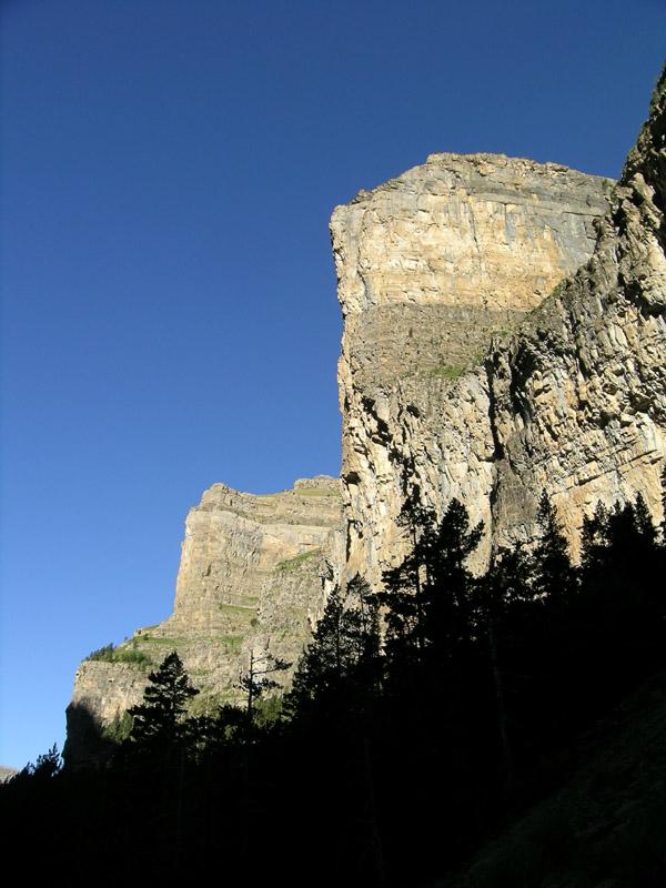 PireneiMontagne