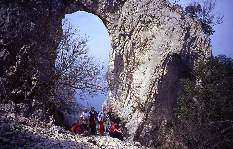 SardegnagruppoAlbero