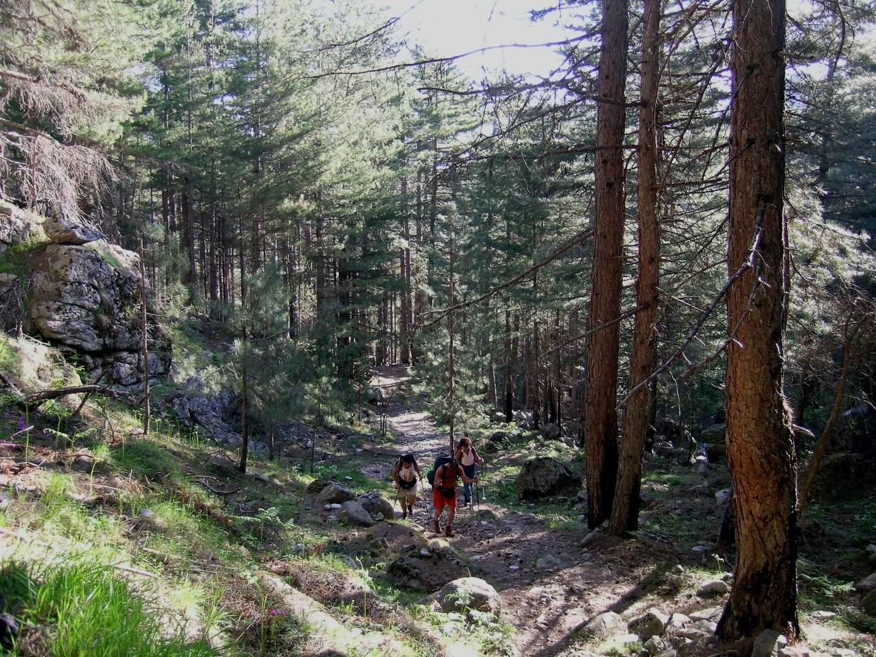 Trek corsica 2005 (1)