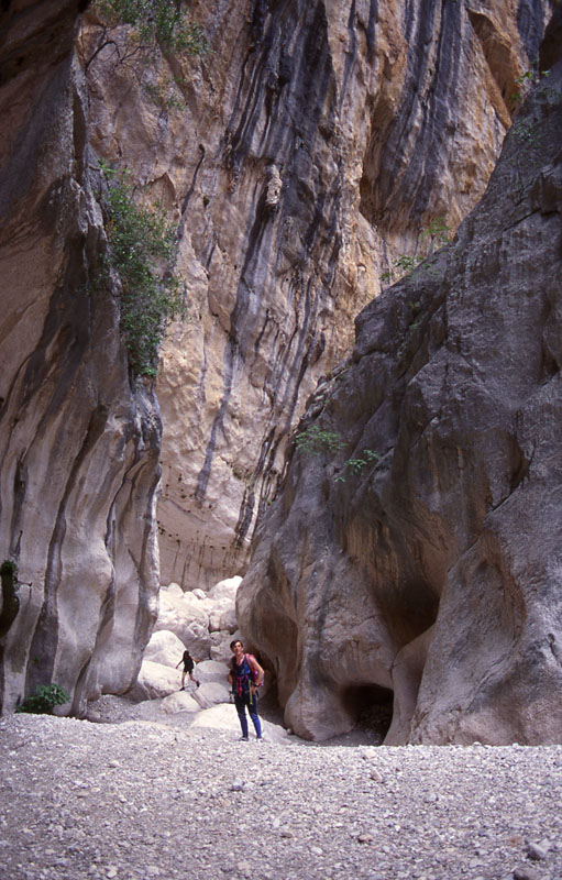 canyonsecco