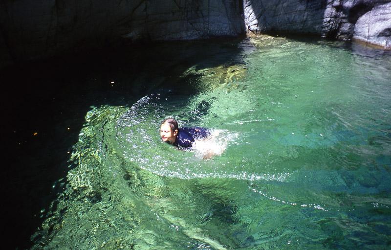 nuotata